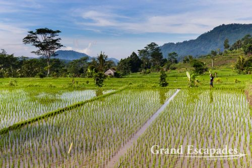Travel Guide To Bali, Indonesia